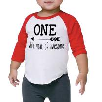 Boy First Birthday Shirt One Whole Year of Awesome