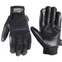 Men's Black HydraHyde Leather Palm Winter Work Gloves, Large (Wells Lamont 3219K)