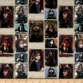 Camelot Fabrics Harry Potter Digital Hermione Multi Fabric by The Yard, Multicolor