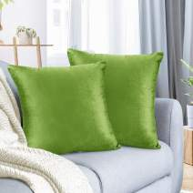 "Nestl Bedding Throw Pillow Cover 24"" x 24"" Soft Square Decorative Throw Pillow Covers Cozy Velvet Cushion Case for Sofa Couch Bedroom, Set of 2, Garden Green"