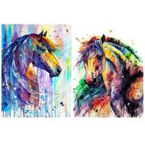 HaiMay 2 Pack DIY 5D Diamond Painting Kits for Adults Paint by Number Kits Full Drill Painting Diamond Pictures Arts Craft for Wall Decoration, Colorful Horse (12×16inches)