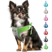 Fida Step-in Dog Harness, Superior Reflective Puppy Vest Harness- All Weather Air Mesh, Adjustable Harness for X-Small Dogs (XS, Green)