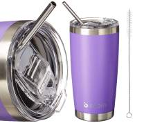 BIQIB 20 oz Stainless Steel Vacuum Insulated Tumbler Coffee Cup Camping Thermoses Travel Mug with Lid, Straws, Brush,Peak Purple