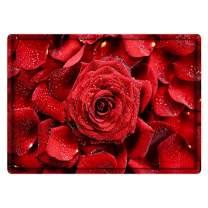 Valentine's Day Welcome Doormat, Love Decorative Floor Mat Heart Pattern Entrance Carpet for Front Porch, Kitchen, Farmhouse, Entryway, Gift for Girlfriend/Boyfriend (40x60cm, Rose Flower)