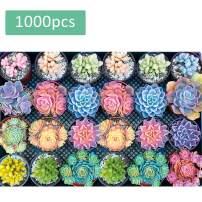 Puzzle 1000 Piece Puzzles Puzzle for Adults Puzzle Puzzles Jigsaw Puzzles for Adults – Succulent Plants