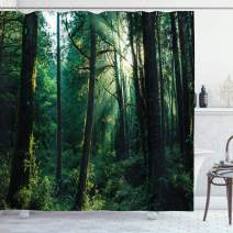 """Ambesonne Nature Shower Curtain, Sunset in Woods Sun Beaming Through Forest Trees Wilderness Scenery, Cloth Fabric Bathroom Decor Set with Hooks, 75"""" Long, Forest Green"""