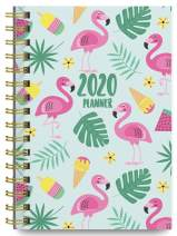 2020 Tropical Soft Cover Academic Year Day Planner Book by Bright Day, Weekly Monthly Dated Agenda Spiral Bound Organizer, 16 Month Calendar 6.25 x 8.25 Inch,