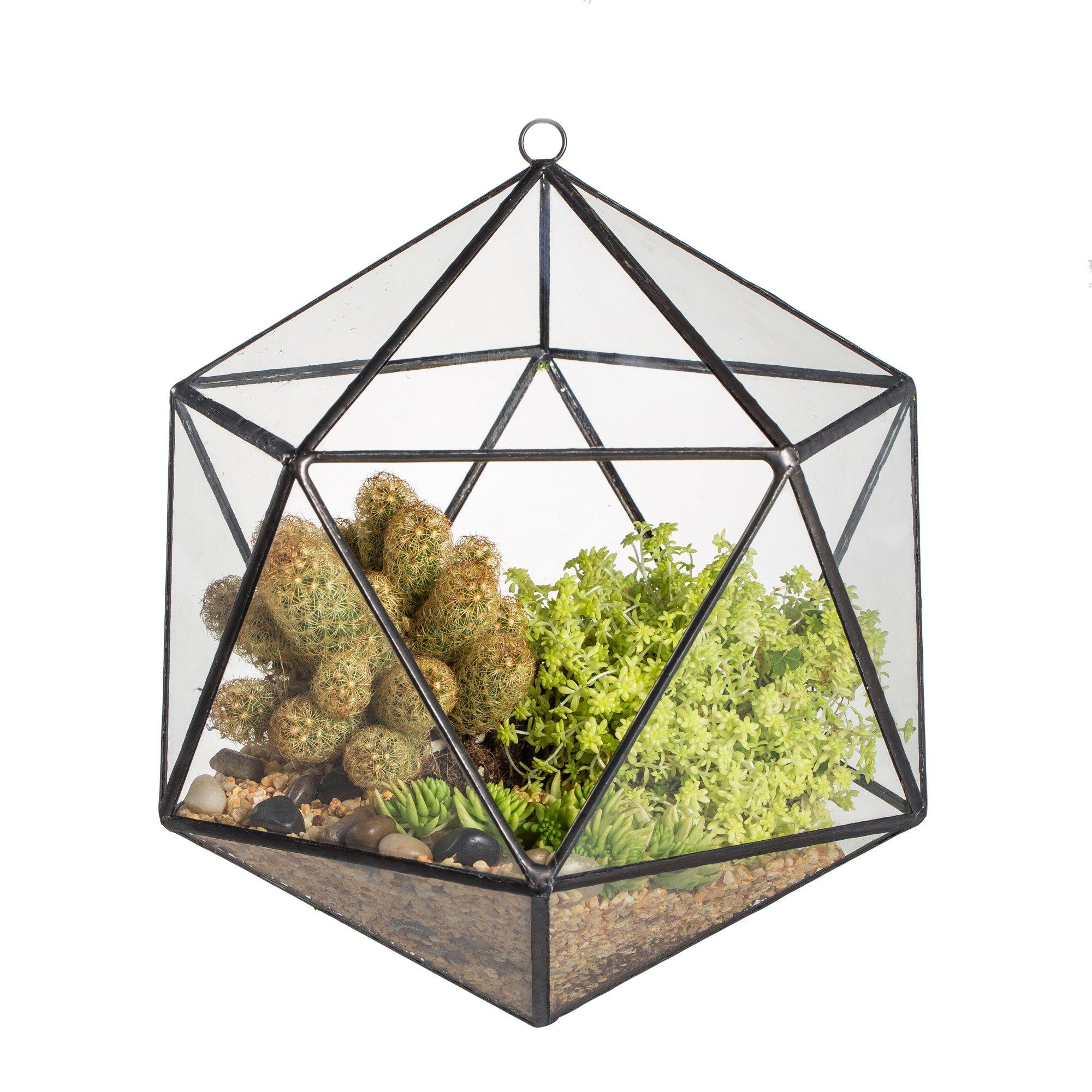 NCYP Wall Hanging Geometric Terrarium Balcony Tabletop Windowsill Decor Glass Flower Pot Modern Large Indoor Garden Micro Landscape Icosahedron Planter for Succulent Plant (NO Plants)