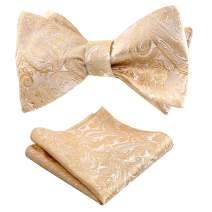 Alizeal Mens Paisley Jacquard Self Bow Tie Pocket Square Set