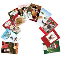 10 Boxed 'PetiGtreet: Frozen Paws' Assorted Funny Christmas Cards w/ Envelopes - Cute Dogs and Merry Xmas Greetings - Happy Holiday and Seasons Greetings Gift - 10 Unique Card Designs A5556XSG-B1x10