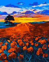 """Paint by Numbers for Adults by BANLANA, DIY Adult Paint by Number Kits for Beginners on Canvas Rolled 16"""" by 20"""" (Poppy Field)"""