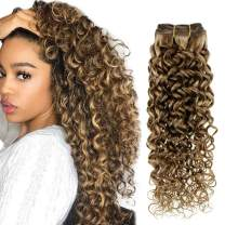 Hetto Curly Clip in Hair Extensions Human Hair Brown Highlight Blonde Natural Wave Hair Extensions Real Human Hair 18 Inch 100g Curly Clip in Extensions Natural Hair