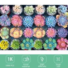 1000 Piece Large Jigsaw Puzzle for Adults - Succulent Plants - 1000 pcs Jigsaw Puzzle Game Interesting Toys - Hand Made Puzzles Personalized Gift