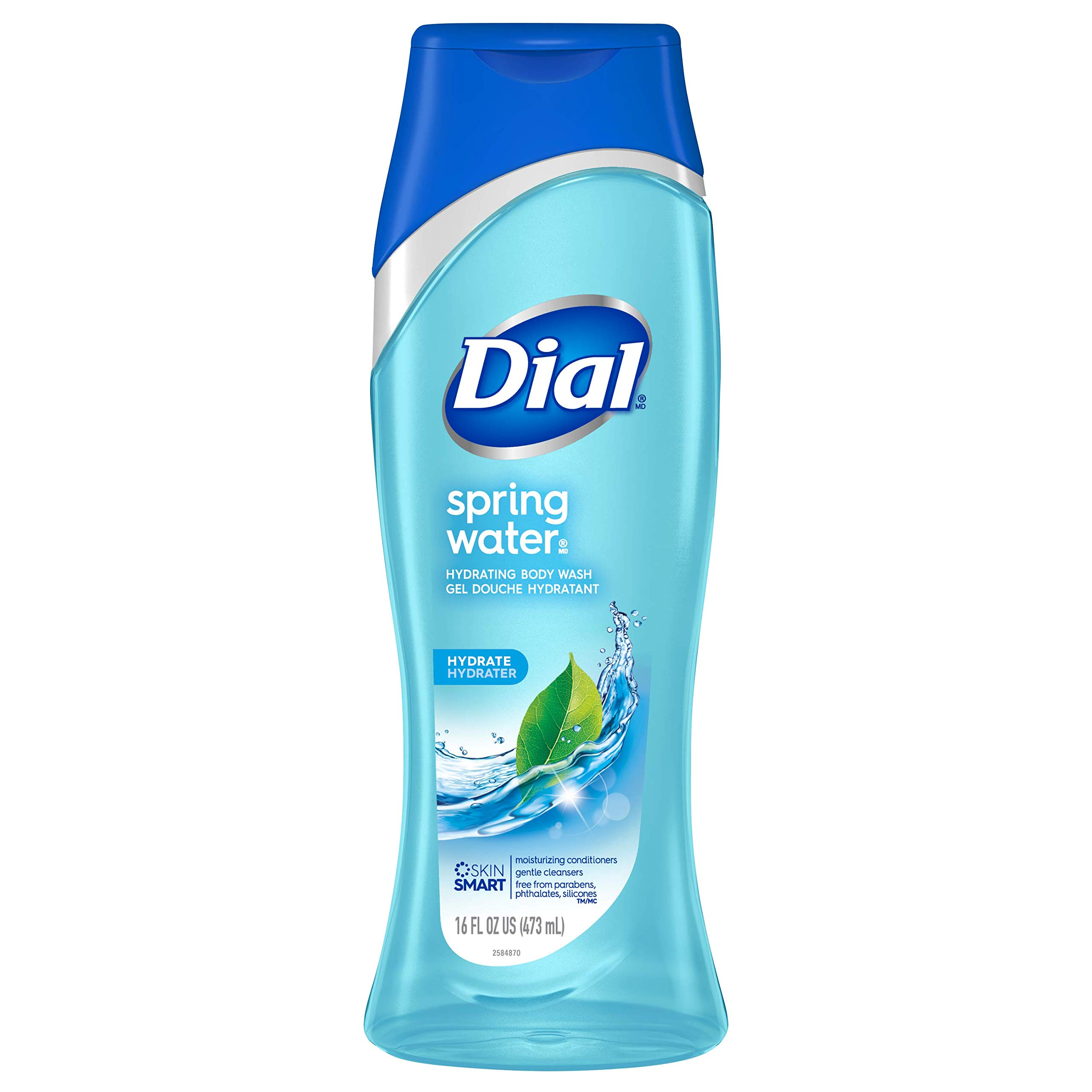 Dial Body Wash, Spring Water, 16 Ounces (Pack of 6)