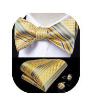 DiBanGu Bow Ties for Men Woven Silk Bow Tie Self Tie and Pocket Square Cufflinks Paisley Novelty Design