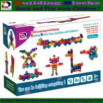 ZP ZaoProteks Rich and Colorful Building Blocks, STEM Toys ,Educational Building Toys ,Grow and Play with Children (Block C)