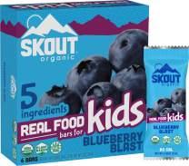 Skout Organic Blueberry Blast Real Food Bars for Kids (6 Pack) | Organic Snacks for Kids | Plant-Based Nutrition, No Refined Sugar | Vegan & Paleo | Gluten, Dairy, Grain, Peanut Free