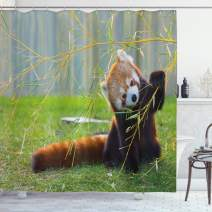 "Ambesonne Africa Shower Curtain, Red Panda on The Field Playing with Bamboo Branches Native Himalaya Mountains, Cloth Fabric Bathroom Decor Set with Hooks, 75"" Long, Brown Green"