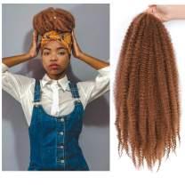 Dansama Marley Hair 24 Inch Marley Braiding Hair Marley Crochet Hair Long Afro Kinky Curly Crochet Hair Extension 3 Packs (24 Inch (Pack of 3), #30)