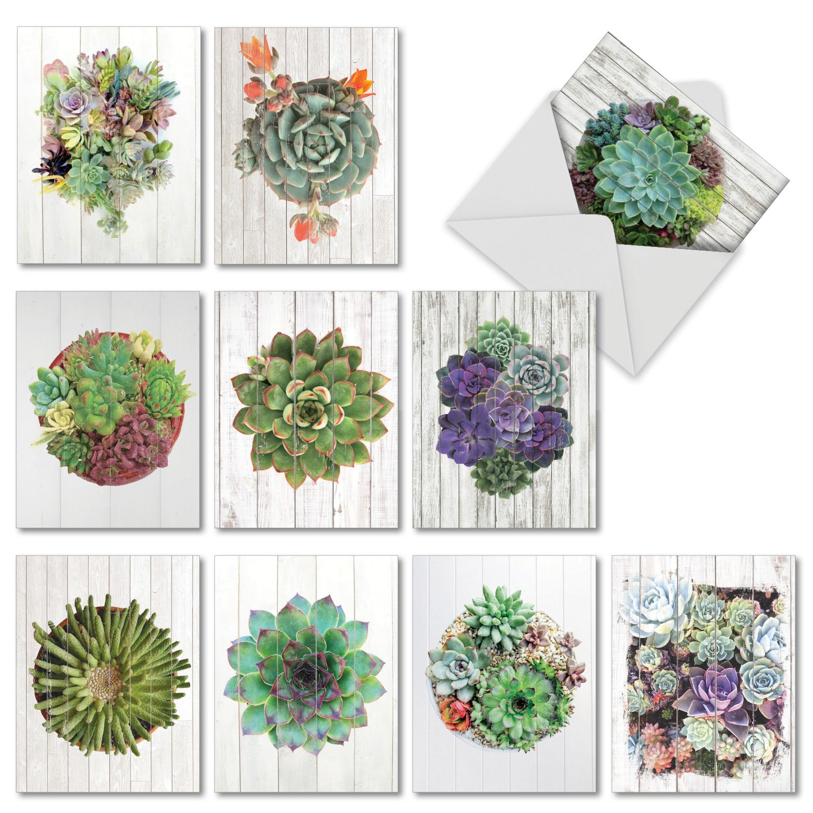 Shiplap Succulents - 10 All Occasion Note Cards with Envelope (4 x 5.12 Inch) - Assorted Colorful Plants, Greeting Cards for Plant Lovers - Nature Stationery Notecard Pack Set AM6438OCB-B1x10