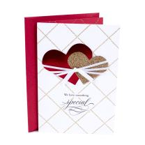 Hallmark Valentine's Day Card for New Relationship (Something Special)