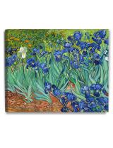 DECORARTS - Irises in The Garden, Vincent Van Gogh Art Reproduction. Giclee Canvas Prints Wall Art for Home Decor 30x24