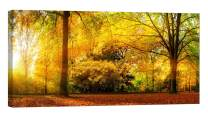 LightFairy Wall Art for Living Room - Glow in The Dark Canvas Painting - Stretched and Framed Giclee Print - Autumn Fall Nature Landscape Park - Wall Decorations for Bedroom - 32 x 16 inch