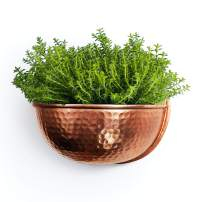 """Wall Planter for Farmhouse Wall Decor   Hanging Planter Plant Pot for Indoor or Outdoor Plants  Copper Pot for Boho Kitchen Decoration   Perfect Succulent Wall Planter Gift 12.5x6.5"""""""