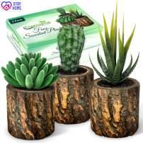 Artificial Succulent Plants Potted & Fake Cactus - Set of 3 - Face Succulent Plants in Pots - Feaux Succulent Plants In Pots For Home, Desk, Bedroom, Kitchen, Bathroom, Bookshelf - Office Decorations