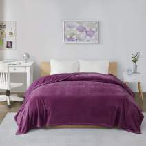 Intelligent Design Microlight Plush Luxury Oversized Blanket Premium Soft Cozy for Bed, Couch or Sofa, Full/Queen, Purple