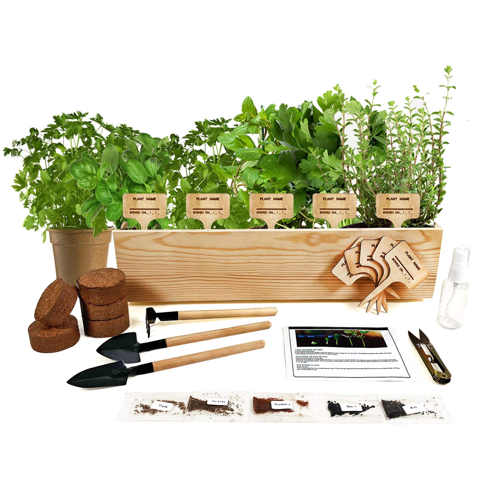 Hand-Mart 5 Herb Seeds Window Planter Starter Kit, Basil Parsley Rosemary Thyme Mint, Including Everything-Soil, Pots, 3 Garden-Tool, Pruner, Sprayer, Plant Labels, DIY Craft for Kids Adults