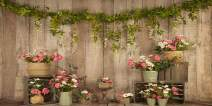 Kate Valentine's Day Photography Backdrops 20x10ft Gray Wood Wall Pink Rose Decoration Background Photo Kids Wedding Party Decorated Photoshoot Props