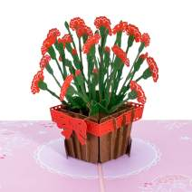 Paper Love Carnations Pop Up Card, 3D Popup Greeting Cards, for Mothers Day, Fathers Day, Birthday, Spring, Graduation, Thank You, Thinking of You, Get Well, All Occasion