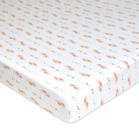American Baby Company Printed 100% Natural Cotton Jersey Knit Fitted Portable/Mini-Crib Sheet, Sparkle Gold/Pink Feathers, Soft Breathable, for Girls, Pack of 1