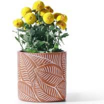 "POTEY Cement Planter Flower Pot - 7.3"" Vintage Indoor Plants Containers Unglazed Medium Bonsai with Drain Hole - Terracotta, Leaves Embossment"