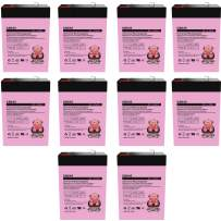 Charity Battery 6V 4.5Ah Compatible with PS-640, PS640F1, UB645 Replacement SLA Batteries New! - 10 Pack