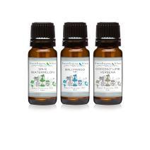 Trio (3) - Barnhouse Blue - Wild Watermelon, Bali Mango Type & Coconut Lime Verbena - Premium Fragrance Oil Trio - 10ml
