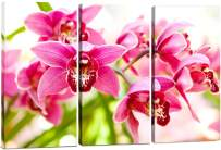 Pink Flower Wall Art, Simple 3 Piece Orchid Wall Decor, Minimalist Floral Prints, Small Botanical Pictures, Framed Tropical Painting Print Set, Canvas Wall Art for Bedroom, Bathroom & Office