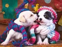 Buffalo Games - A Dog's Life - Best Friends - 750 Piece Jigsaw Puzzle