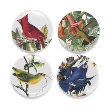 Buttonsmith Audubon Birds Tinker Top Set - to use with Tinker Reel Badge Reel - Made in The USA
