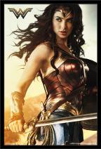 "Trends International DC Comics Movie - Wonder Woman - Shield, 22.375"" x 34"", Black Framed Version"