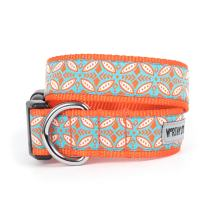 The Worthy Dog Orange Stamp Print Designer Adjustable and Comfortable Nylon Webbing, Side Release Buckle Collar for Dogs - Fits Small, Medium and Large Dogs, Coral & Blue Color
