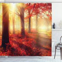 """Ambesonne Woodland Shower Curtain, Sun Beams Through Misty Old Forest in Fall Season Morning View Dreamy Picture, Cloth Fabric Bathroom Decor Set with Hooks, 70"""" Long, Yellow Red"""