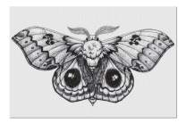 Black & White Sketch of Beautiful Butterfly in Tattoo Style 9016525 (Premium 1000 Piece Jigsaw Puzzle for Adults, 20x30, Made in USA!)
