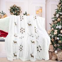 Noahas Super Soft Sherpa Fleece Blanket - Dual Sided Fuzzy Soft Sherpa Faux Fur Blanket Christmas Decorative Couch or Bed Throws, 60x80 White