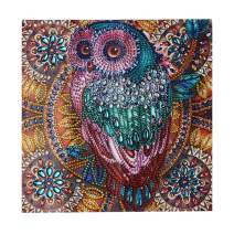 S SNUOY Diamond Painting Owl 5D Canvas Special Shaped Diamond Embroidery Adults Kids DIY Art Crafts 30X30CM Paint by Number Kits Mosaic Craft Kits Bird Without Frame