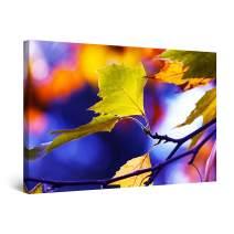 "Startonight Canvas Wall Art Macro Leaf Photo Blue Purple Large Decor Framed 32"" x 48"""