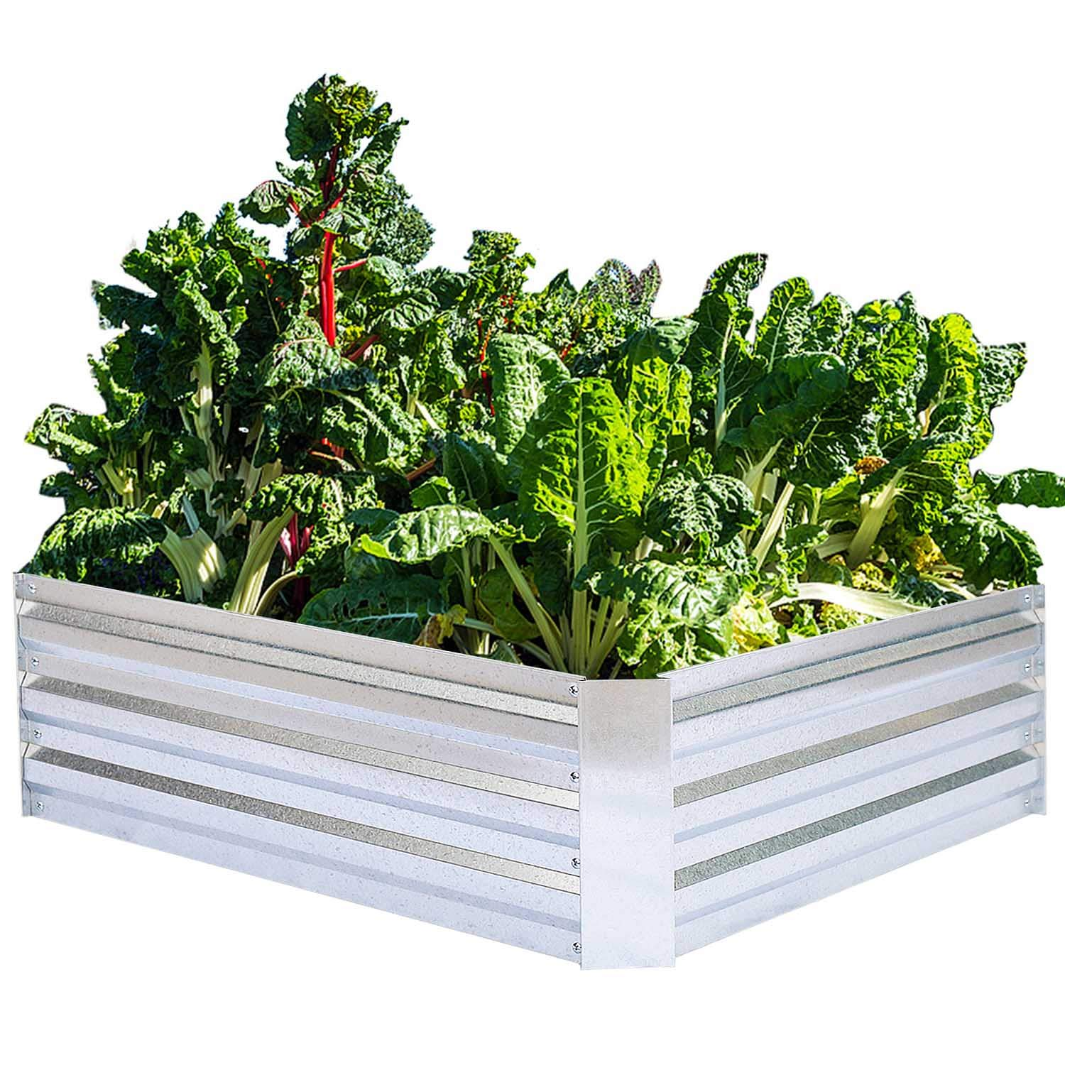 Galvanized Raised Garden Beds For Vegetables Metal Planter Boxes Outdoor Flower Bed Kit Steel Patio 4x3x1ft