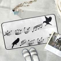 Naanle Musical Bird Anti Fatigue Kitchen Floor Mat, Music Note Non Slip Absorbent Comfort Standing Mat Kitchen Runner Rug for Hallway Entryway Bathroom Living Room Bedroom 39 x 20 Inches