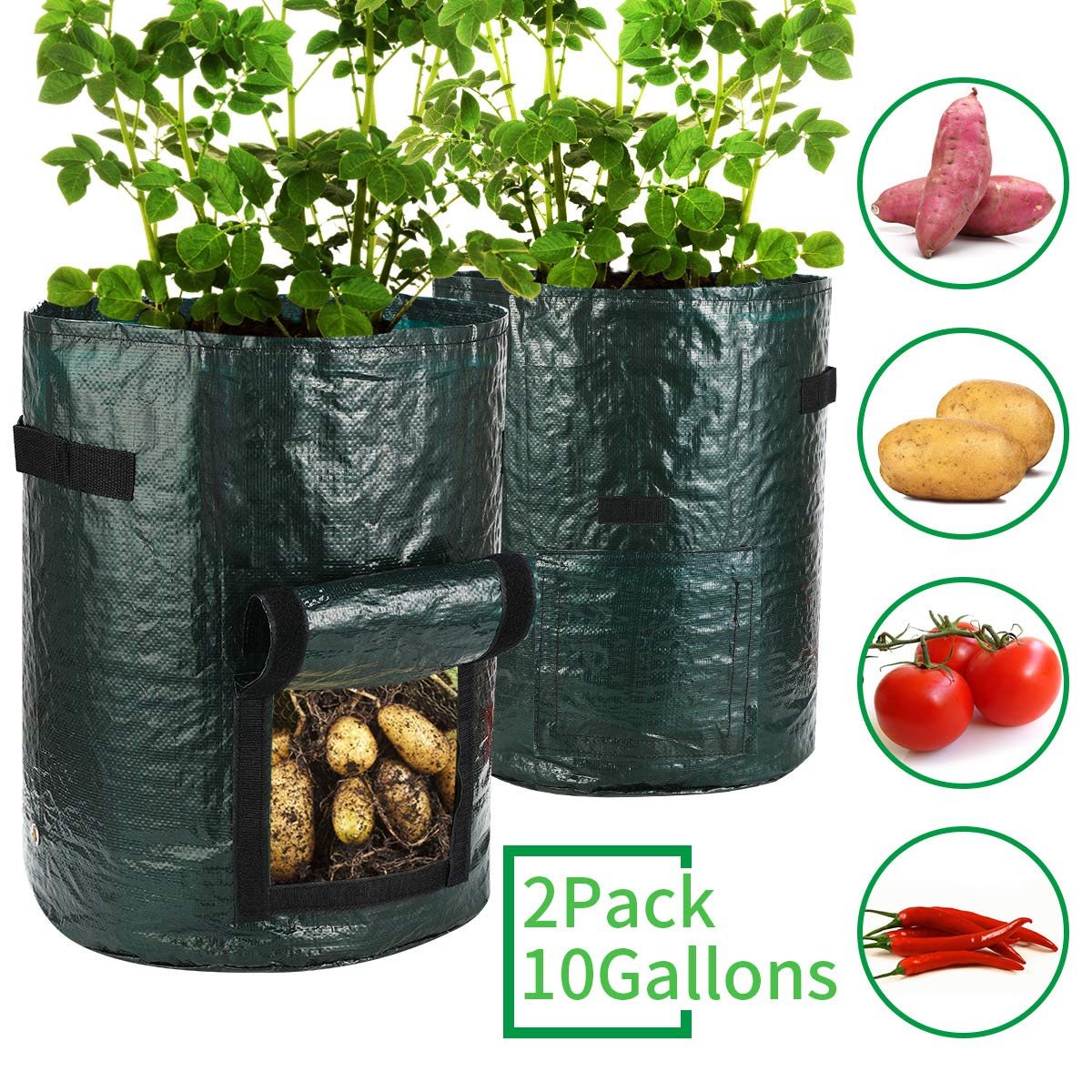 Futone Grow Bags, Potato Planter Bags, Planting PE Aeration Pots with Handles and Flap, Garden Bags for Vegetables, Tomatoes, Carrots, Onions (10 Gallons - 2 Pack - Green)